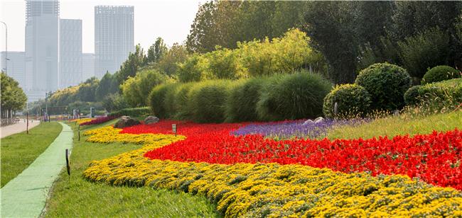 紫云公园3.jpg